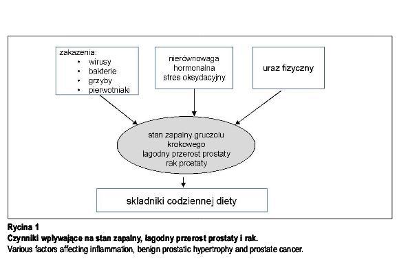 stan_zapalny_rak_prostaty